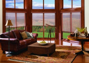 Boise Blinds, Shades, and Shutters,  solar shades